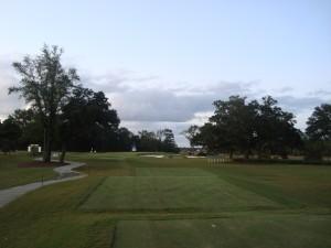 The par-3 15th hole at the Daniel Island Club.
