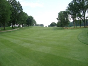 A look back up the fairway, almost as beautiful!